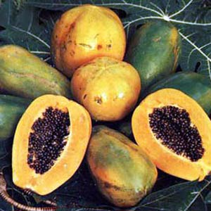 Обертывание из папайи