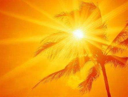 15 советов, как легче всего перенести жару