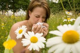 Пять фактов об аллергии. То, чего вы возможно не знали