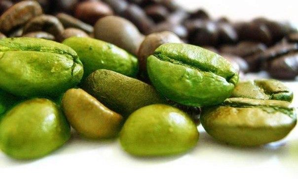 Зелёный кофе: жизнь без лишнего веса