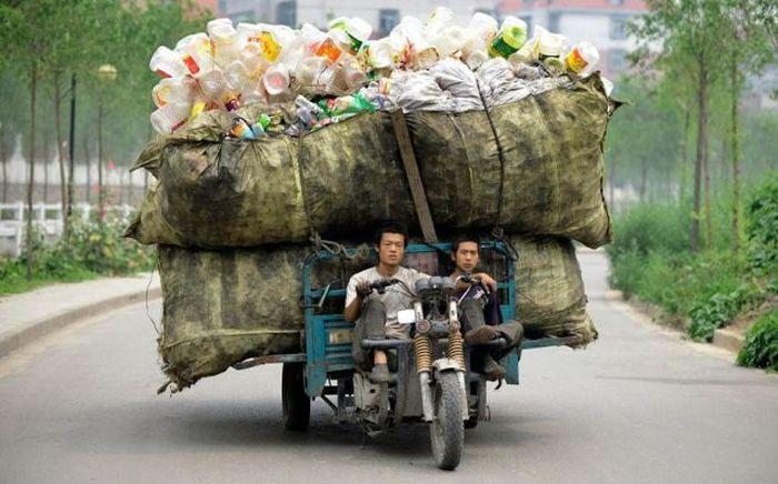 Гарантия чистоты – вовремя вывезенный мусор
