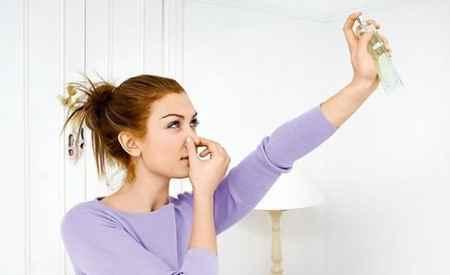 Как избавиться от посторонних запахов в доме