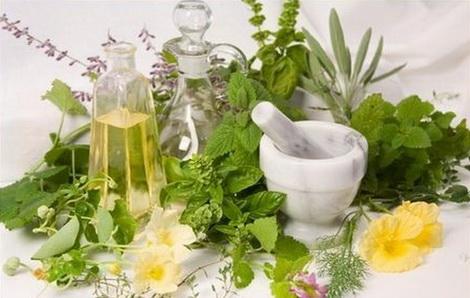 Травы для здоровья женщины