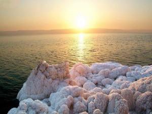 Чем полезно оливковое масло и косметика Мертвого моря