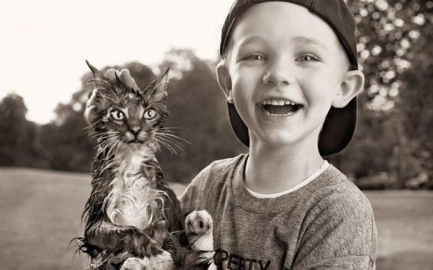 Домашние животные как помощники в воспитании ребёнка
