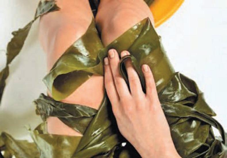 Чем полезно водорослевое обертывание