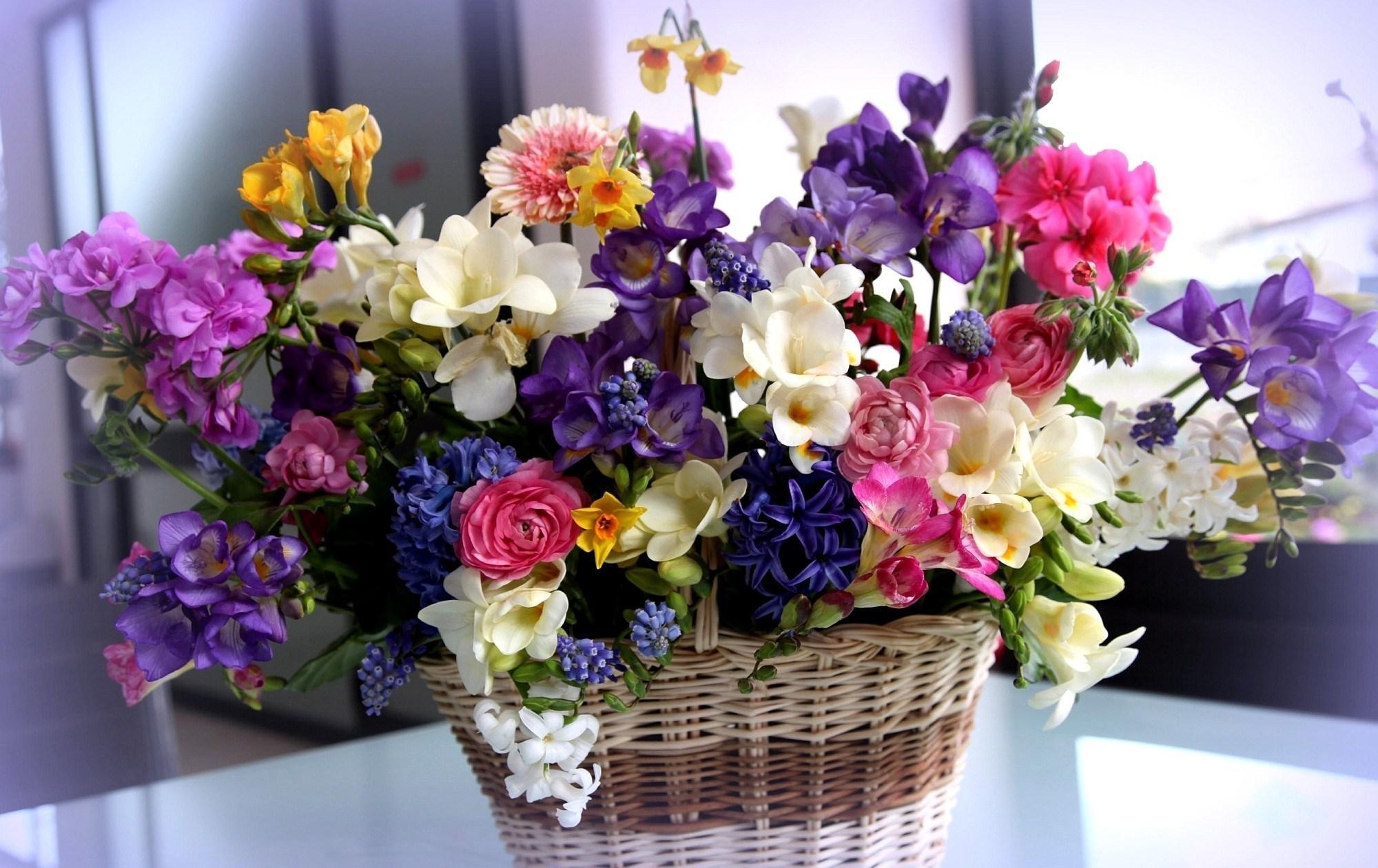 Срезанные цветы или 6 советов о правильном выборе букета