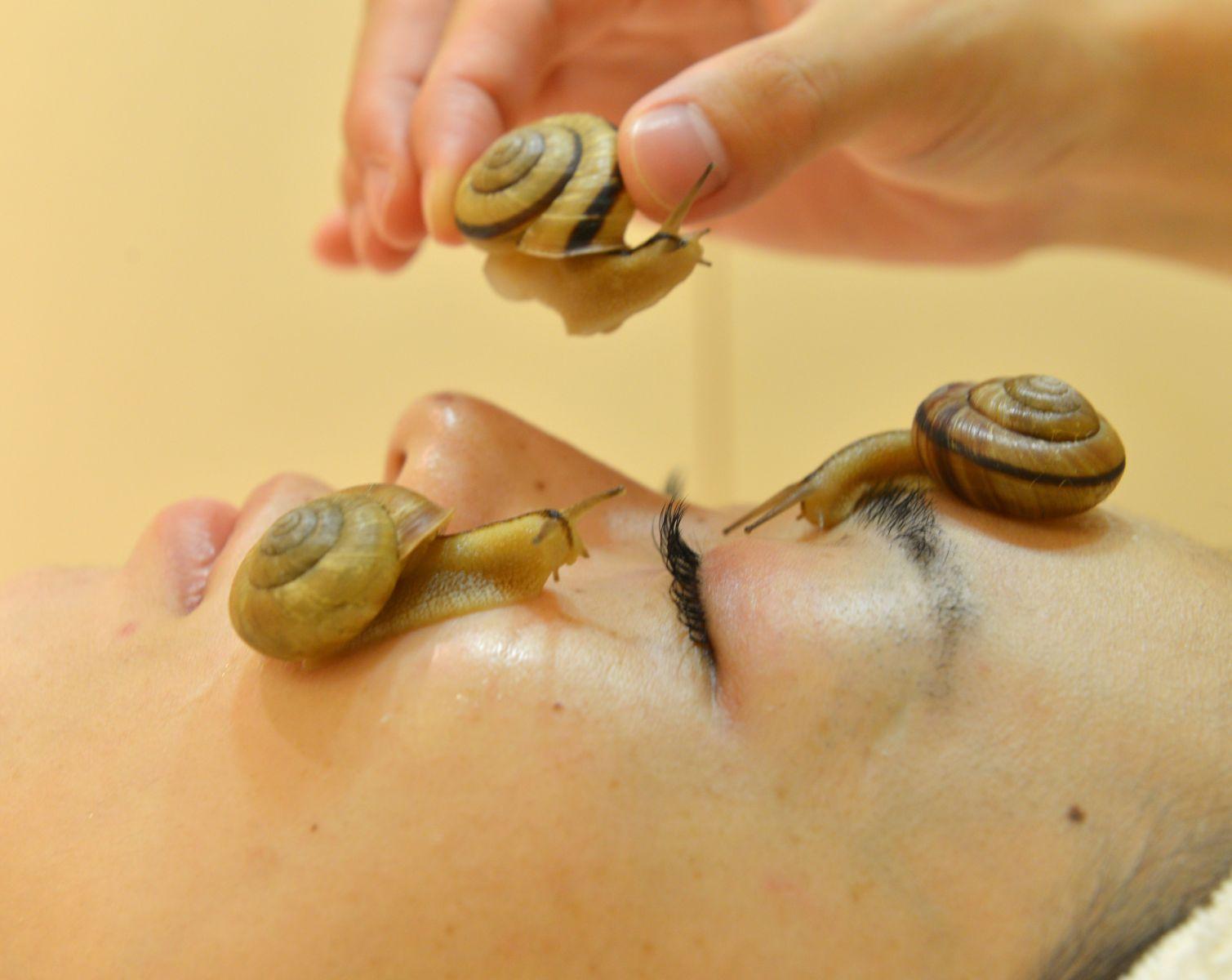 Улитка на лице эффективнее крема