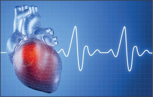 Новосибирские ученые изобрели «ботокс» для сердца