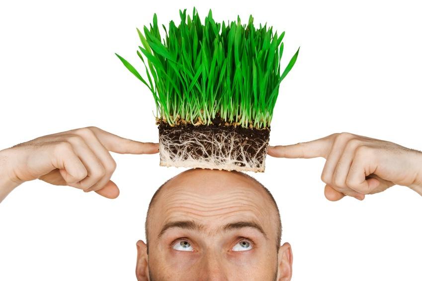 Процедура пересадки волос