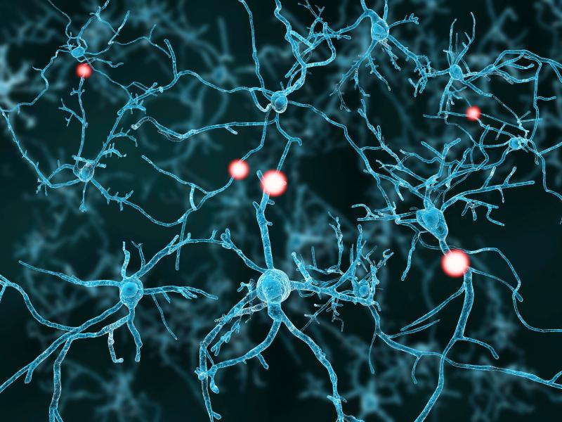 Взрослые стволовые клетки помогут увеличить грудь