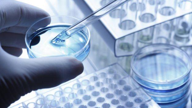 Протеиновая матрица полностью устранит косметические дефекты