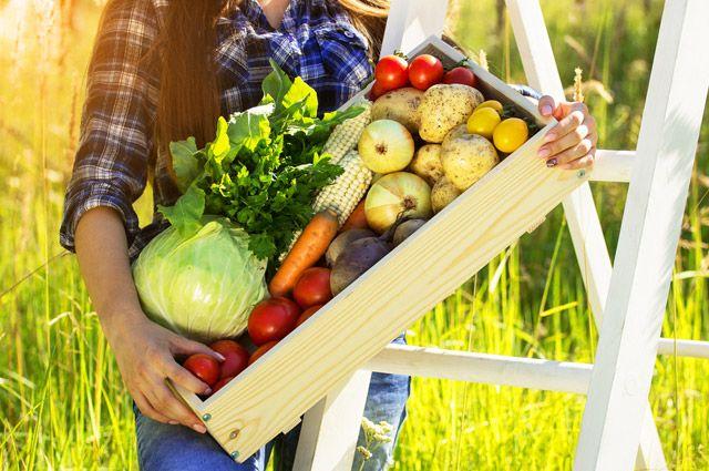 На чём худеть осенью? Правила сезонной диеты