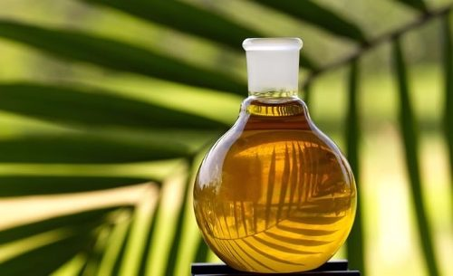 Эксперты рассказали о пользе пальмового масла