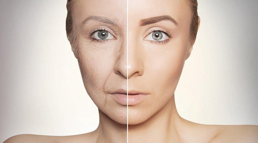 Эти продукты помогут максимально отсрочить старение