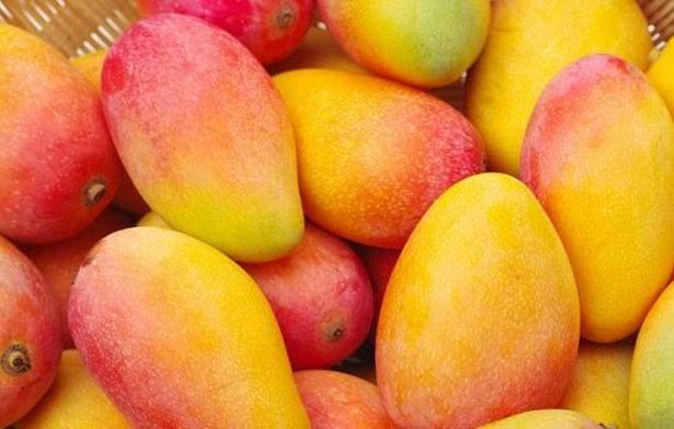 Медики подсказали, какой фрукт продлит молодость кожи