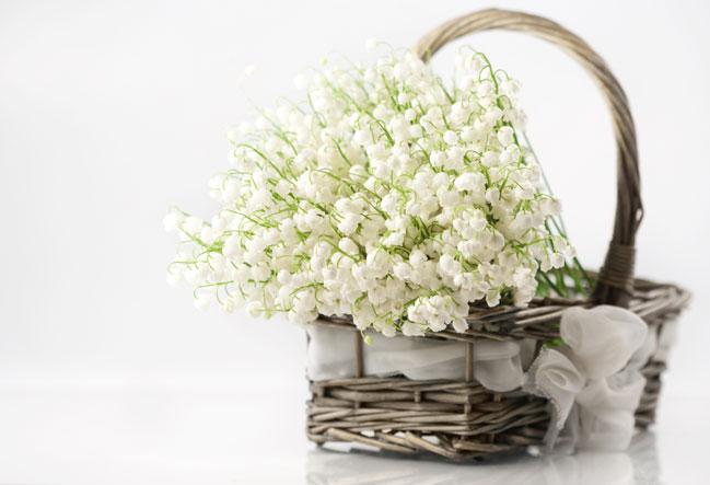 Поведайте о сокровенных чувствах с помощью салона доставки цветов в Екатеринбурге«Flori24.ru»