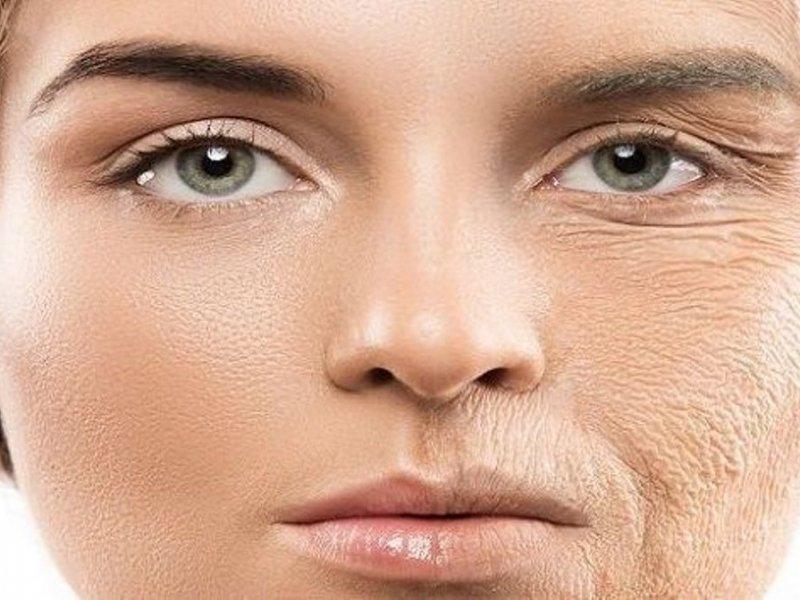 Богатые белками продукты против старения