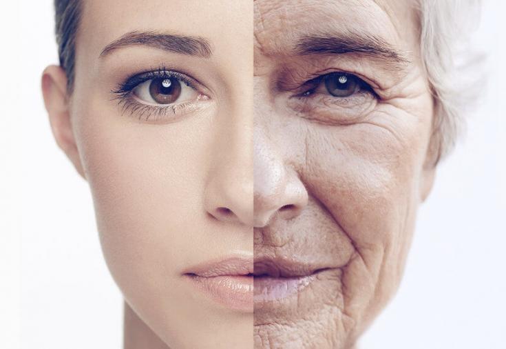Ученые нашли новый способ, который поможет замедлить процессы старения